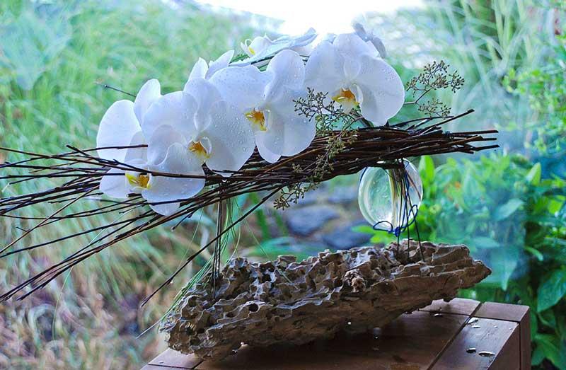 Fullbloomflowers
