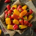 roasted sweet pepper sauce