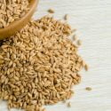 farro vs wheat berries