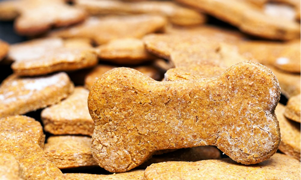 Homemade Dog Treat